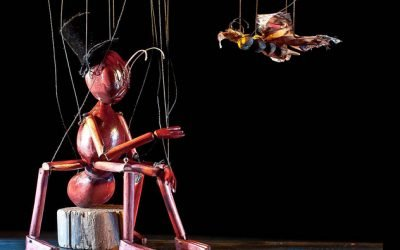 Insect Circus by String Puppet Theatre