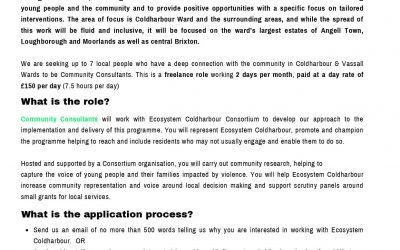 Community Consultant Post